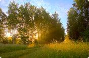 Солнечная поляна (Симферопольское)