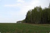 Петрово поле (продан)