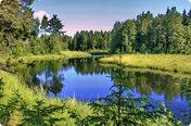 Лесной (Новорязанское) (продан)