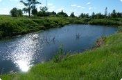 У семи прудов