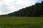 Елизарово Парк