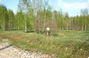 Лесные дворики
